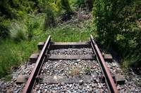 Verbände wollen Bahnstrecken im Südwesten wiederbeleben