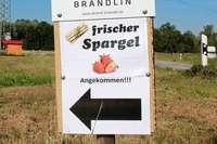 Die Spargelsaison im Markgräflerland wird bei manchen Bauern früher enden