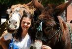 Fotos: Eselfest auf dem Freiburger Mundenhof