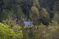 Mega-Hirsch in Todtmoos-Au aufgebaut