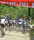 Freiburger Stadtmeisterschaft