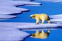 Klimakonferenz ohne Bewegung