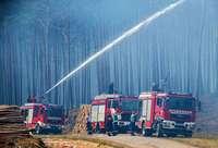 Größter Waldbrand in der Geschichte Mecklenburg-Vorpommerns