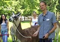 In Donaueschingen helfen Lamas bei der Psychotherapie
