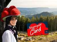 """BZ-Card verlost zwei """"Familien-SchwarzwaldCard"""""""