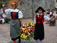 So bunt war der Schwyzertagsumzug durch Waldshut-Tiengen