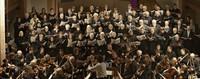 Werke von Telemann, Haydn und Händel erklingen in der Stiftskirche