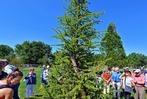 Fotos: BZ-Hautnah im Klimawandelwald am Freiburger Seepark