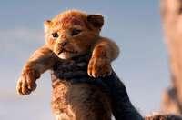 Der König der Löwen: So echt sah Animation noch nie aus