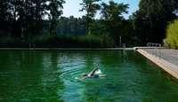 Warum das idyllisch gelegene Naturbad Murg nicht zu toppen ist