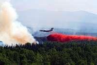 Riesige Waldbrände in Sibirien könnten dem Weltklima merklich schaden