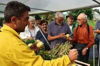 Kaiser-Wilhelm-Gurken und vieles mehr: Plädoyer für alte Obst- und Gemüsesorten