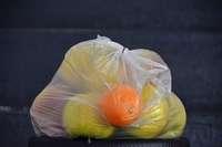 Händler kritisieren Plastiktütenverbot