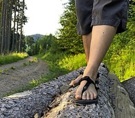 Soweit die Füße tragen - Gehen als Auszeit