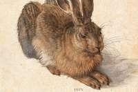 Wieso ist Dürer berühmt?