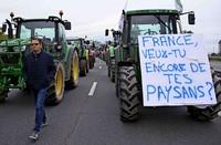 Die Bauern im Elsass sind wütend