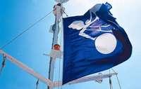 Logistikunternehmen Panalpina verliert in Basel bis zu 165 Stellen