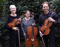 Ines Then-Bergh, Maria-Luise Leihenseder-Ewald und Sebastian Wolfahrth in Emmendingen