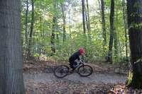 In Gundelfingen gibt's bald einen Mountainbike-Trail für junge Sportler