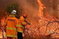 Verheerende Buschfeuer: Australischer Bundesstaat ruft Notstand aus