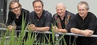 Papa-Klaus-Quartett in Waldkirch