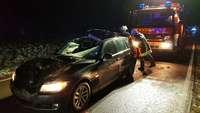 Autofahrer rammt Jungkuh in der Dunkelheit