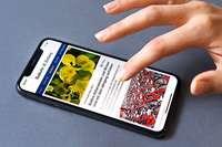 Jetzt neu: Die Badische Zeitung hat ihre News-App BZ-Smart überarbeitet