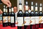 Fotos: Das war die Lahrer BZ-Weinprobe 2019