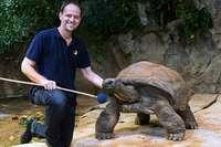 Diese Schildkröte hat ein super Gedächtnis