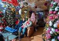 Im Haus einer Familie in Niedersachsen stehen 350 Weihnachtsbäume