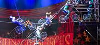 Zirkus-Artisten abgestürzt