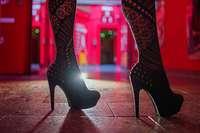 Neues Gremium zieht erste Bilanz: Werden Prostituierte ausreichend geschützt?
