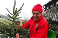 Lenzkircher verkauft lokale Weihnachtsbäume ohne Pestizide