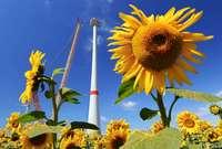Bundesregierung uneins über Anhebung des EU-Klimaziels für 2030