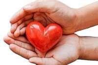 Nutzen Sie mit Ihrer BZ-Card beim Forum Gesundheit Expertenvorträge zum Vorteilspreis!