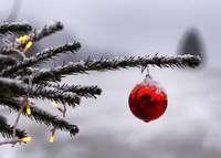 Weiße Weihnachten gibt es dieses Jahr wohl nur in den Alpen