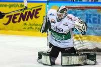 Wild Wings-Torwart Sharipov steht für den EHC in Landshut im Tor
