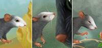 Auch Mäuse haben Gefühle