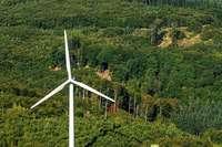 Drei Windräder sollen am Schnürbuck zwischen Ettenheim und Kippenheim entstehen
