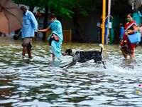 Fotos: Überflutungen nach heftigen Niederschlägen in Mumbai