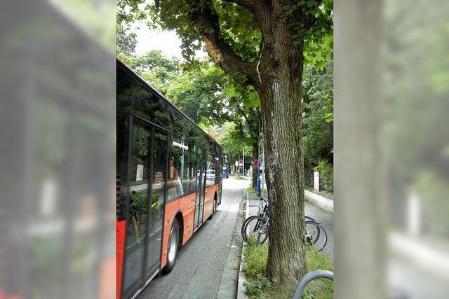 Es war einmal ein Straßenbaum