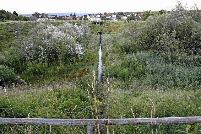 Nachbesserung am Damm