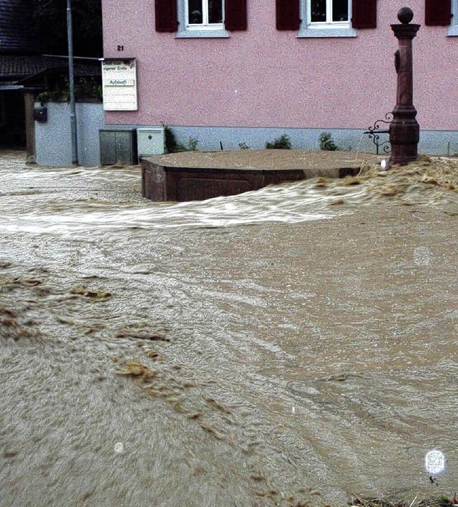 Große Schäden    im privaten Bereich h... St. Ilgen und Sulzburg hinterlassen.   | Foto: Privat
