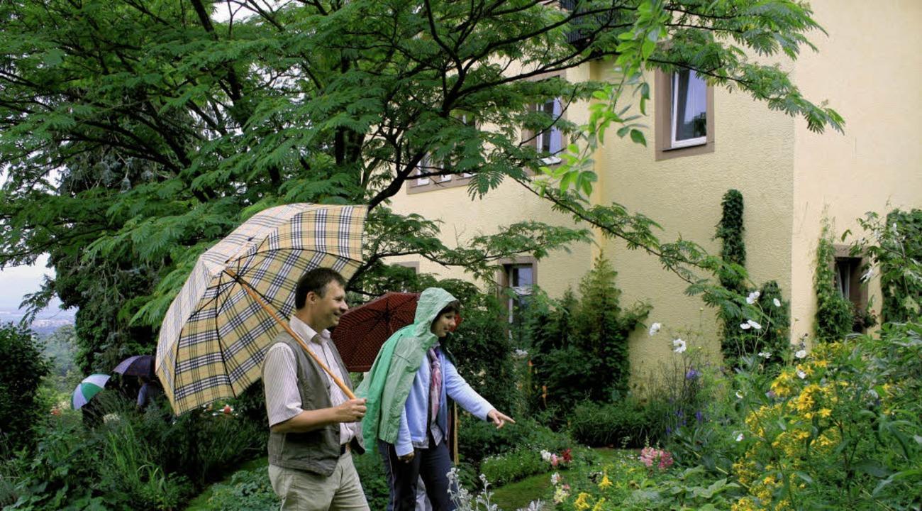 Der Baum im Hintergrund, eine exotisch...k des Gartens auf dem Wöpplinsberg.       Foto: Friederike Marx