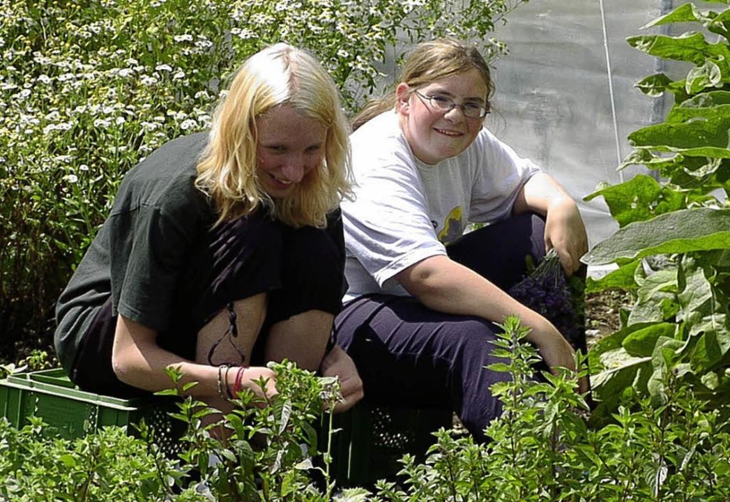"""Manuela und Jessica von der Waldtorsch...vom """"Eulenhof""""  nützlich.     Foto: LINS"""
