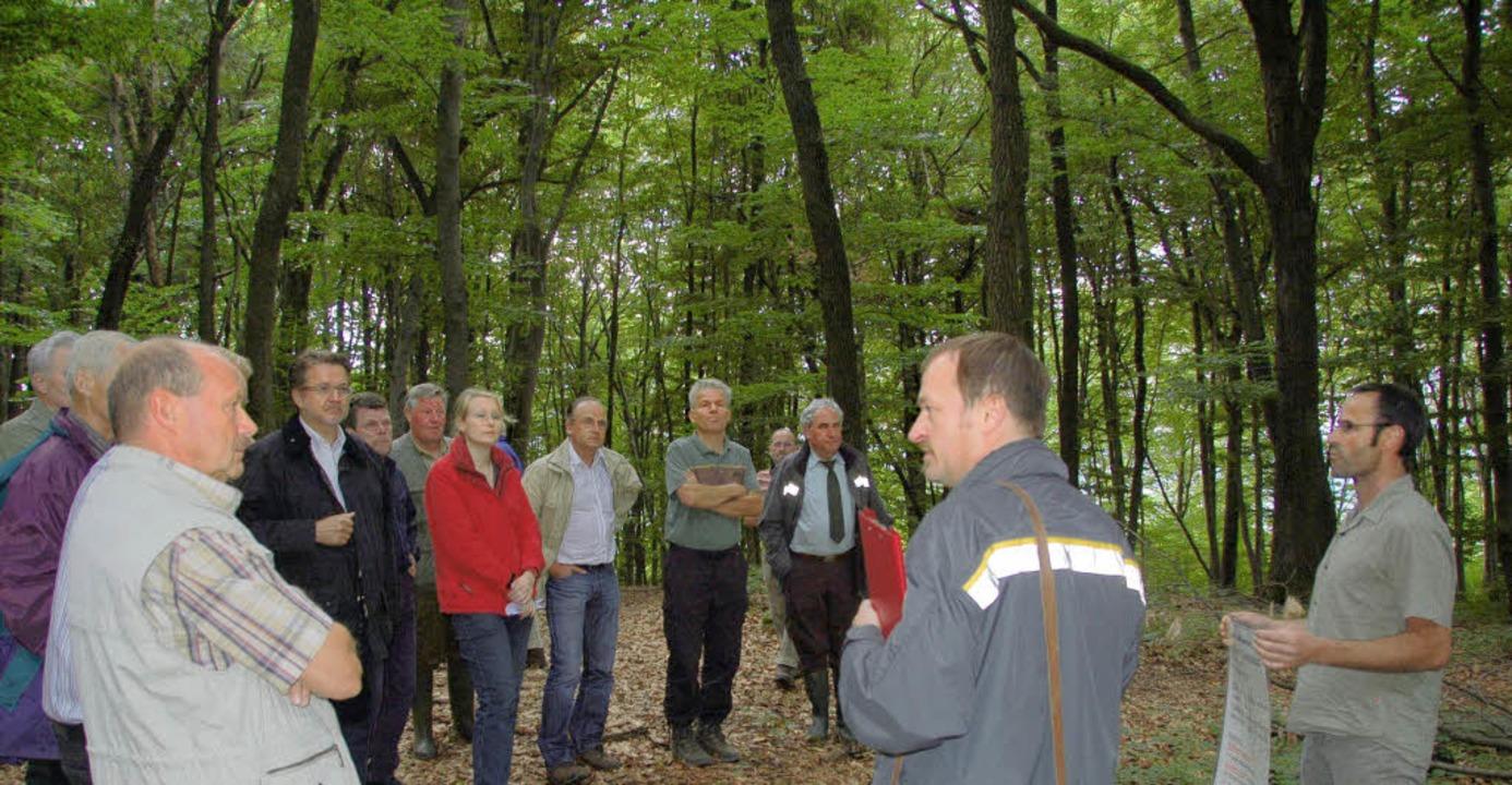 Die nächste Zehn-Jahres-Planung für de...e Besonderheiten des Walds erklärten.     Foto: Langelott