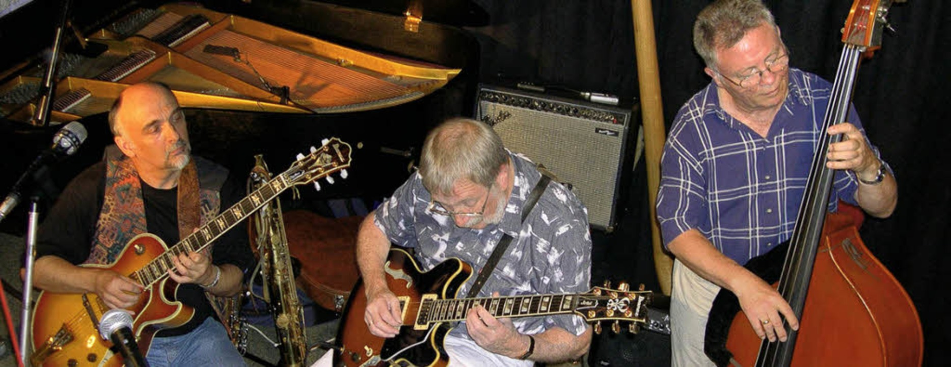 <Bildtext>Die &#8222;Joy Strings&#8220...beim Jazztone-Sommerfest.  </Bildtext>    Foto: Thomas Loisl Mink