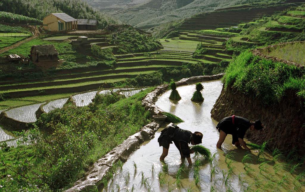 Vietnam Heute