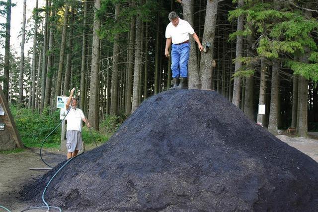 Der Kohlenmeiler qualmt nicht mehr