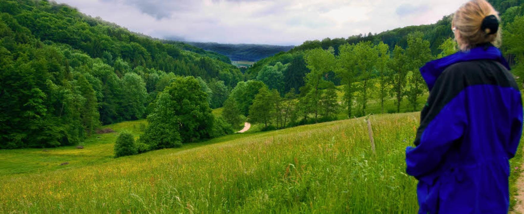 <Bildtext>Hier im Wollbachtal hat sich...e bis heute nicht gefunden.</Bildtext>  | Foto: Birgit-Cathrin Duval